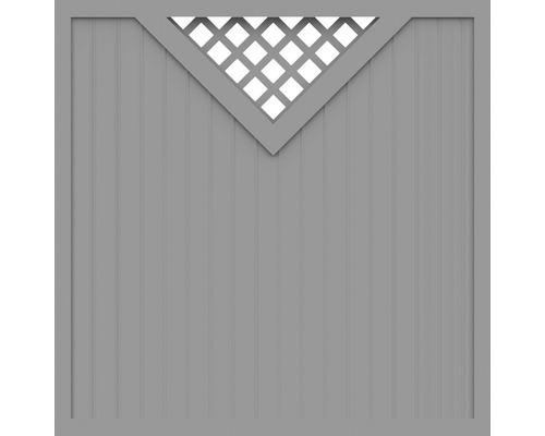 Sichtschutzelement Basic Line Typ B Grau 180 x 180 x 4,8 cm
