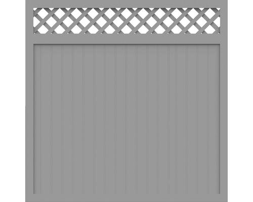 Sichtschutzelement Basic Line Typ C Grau 180 x 180 x 4,8 cm