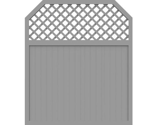 Sichtschutzelement Basic Line Typ I Grau 180 x 210/180 x 4,8 cm