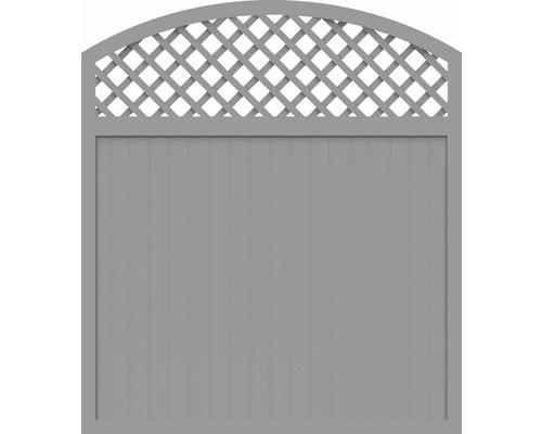 Sichtschutzelement Basic Line Typ X Grau 180 x 205/180 x 4,8 cm