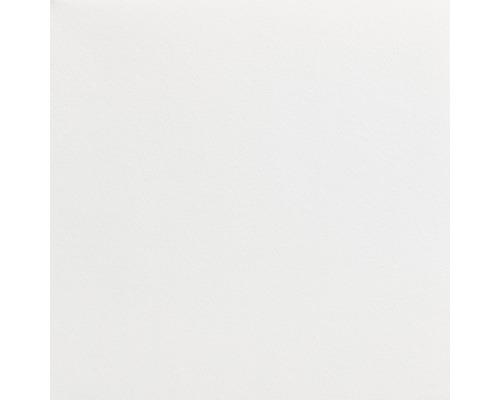 MODULAN Malerglasvlies vorbeschichtet 130g/m² 50 m x 1 m