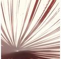 LED Deckenleuchte CCT 60W 4800 lm 3000K-6000 K warmweiß-tageslichtweiß Jacobo weiß/rot HxØ 77/510 mm mit Fernbedienung + Nachtlichtfunktion