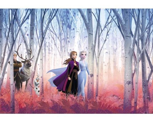 Fototapete Papier Disney Frozen Friends forever 368 x 254 cm