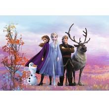 Fototapete Papier Disney Frozen Iconic 368 x 254 cm