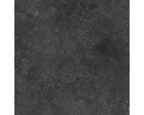 Feinsteinzeug Wand- und Bodenfliese Candy graphite 79,8 x 79,8 cm rektifiziert