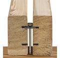 Pinutex Einzeldiele sibierische Lärche 26,5x55x2000 mm 1 Pack = 8 Stück à 2000 mm Länge