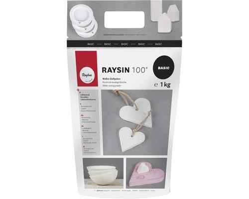 Gießpulver Raysin 100, weiß, Beutel