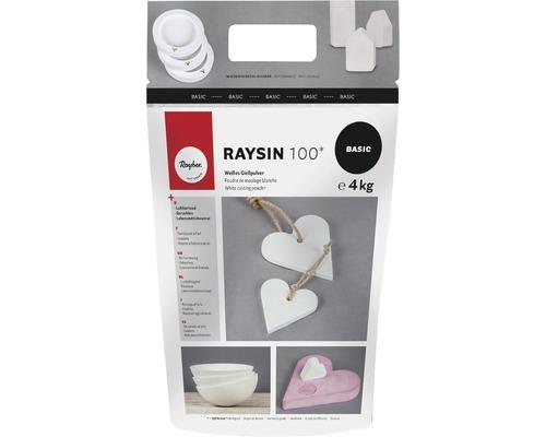 Gießpulver Raysin 100, Beutel 4kg