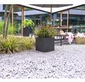 Pflanzkübel Lechuza Canto Stone 40 x 40 x H 40 cm schwarz inkl. Erdbewässerungsystem Pflanzeinsatz Substrat Wasserstandsanzeiger