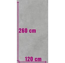 XXL Feinsteinzeug Wand- und Bodenfliese Structure Gris matt grau 120 x 260 cm 6 mm