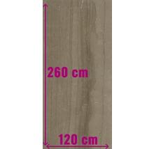 XXL Feinsteinzeug Wandfliese Living Cinnamon poliert braun 120 x 260 cm 7 mm