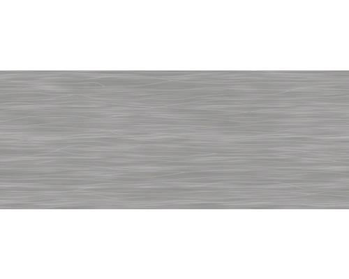 Steingut Wandfliese Mavi grau asphalt glänzend 20 x 50 cm