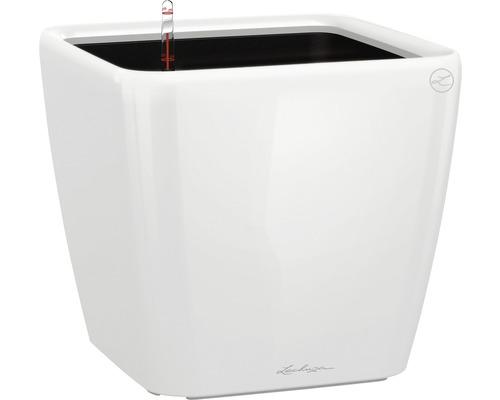 Pflanzkübel Lechuza Quadro 21 x 21 x H 20 cm weiß inkl. Erdbewässerungsystem Pflanzeinsatz Substrat Wasserstandsanzeiger