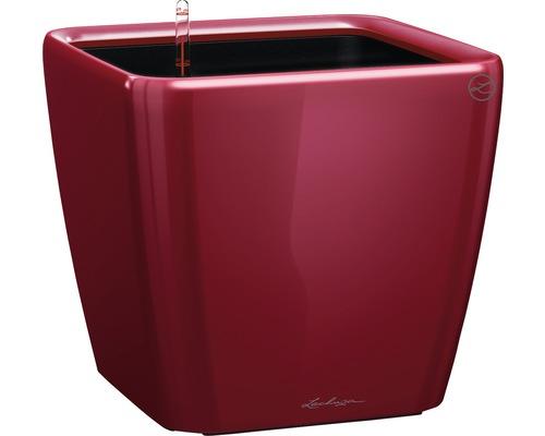 Pflanzkübel Lechuza Quadro 21 x 21 x H 20 cm rot inkl. Erdbewässerungsystem Pflanzeinsatz Substrat Wasserstandsanzeiger