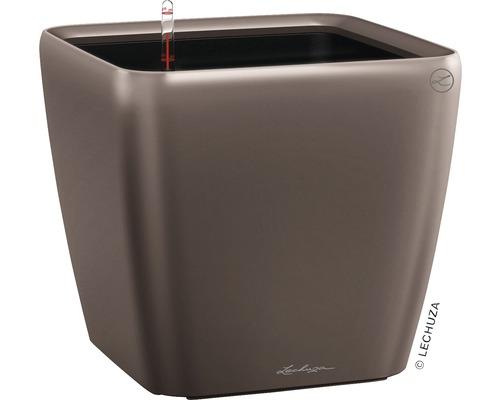 Pflanzkübel Lechuza Quadro 35 x 35 x H 33 cm espresso inkl. Erdbewässerungsystem Pflanzeinsatz Substrat Wasserstandsanzeiger