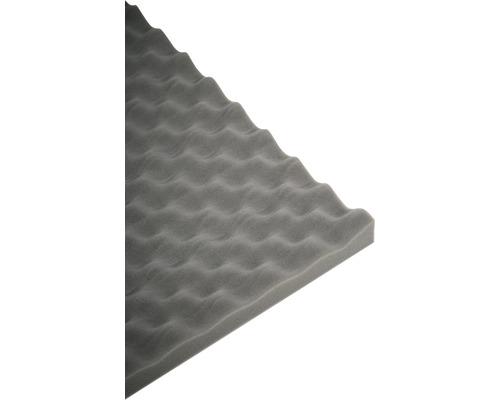 Akustik-Schaumstoff Akupur Noppenplatte 50x70x3 cm