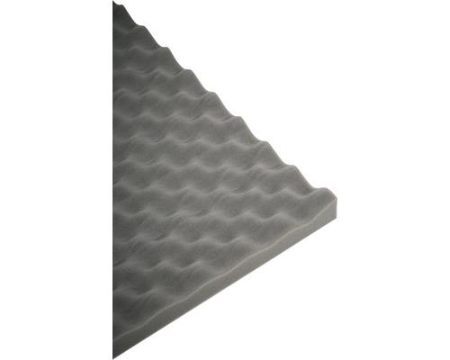 Akustik-Schaumstoff Akupur Noppenplatte 50x70x5 cm