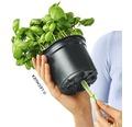 Blumentopf Lechuza Cube Glossy Green Wall H 14 cm Kunststoff weiß inkl. Halterung, Wasserstandsanzeiger, Erdbewässerungsystem und Pflanzeinsatz