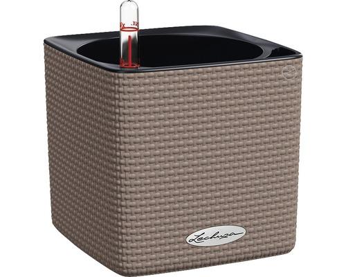 Blumentopf Cube Color H 14 cm Kunststoff muskat inkl. Wasserstandsanzeiger und Pflanzeinsatz