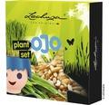Pflanz-Set für Lechuza Ojo Pflanzgefäß nicht enthalten