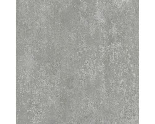 Feinsteinzeug Wand- und Bodenfliese Industrial Steel anpoliert 60 x 60 cm