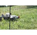 Geflügelnetz Einzelspitze ohne Strom 50 m x 112 cm grün