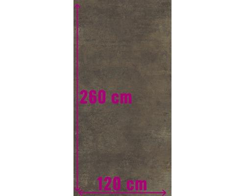 XXL Wand- und Bodenfliese Industrial Copper anpoliert 120 x 260 cm