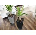 Blumentopf Lafiora Elise Kunststoff 20 x 20 x 36 cmgrau inkl. Pflanzeinsatz und Wasserstandsanzeiger