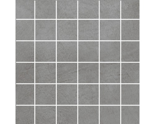 Feinsteinzeug Mosaik Cementine grau 30 x 30 cm R10B