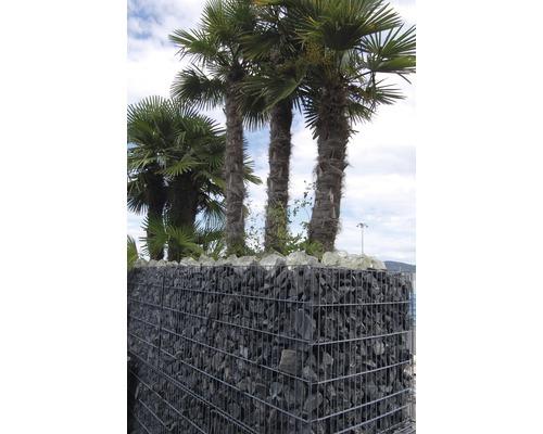 Fertiggabione 100 x 50 x 100 cm gefüllt mit Gabionensteinen Nero Ebano 70-120 mm