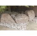 Fertiggabione 100 x 25 x 50 cm gefüllt mit Gabionensteinen Rosso Verona 70-120 mm