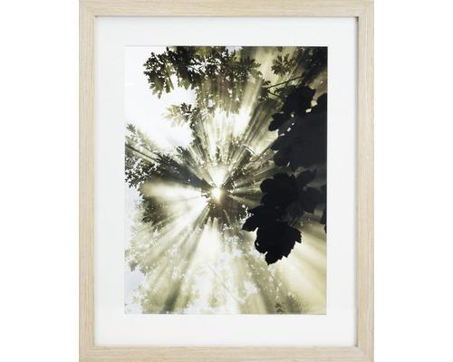 Wandbild gerahmt Blätter 40x50 cm