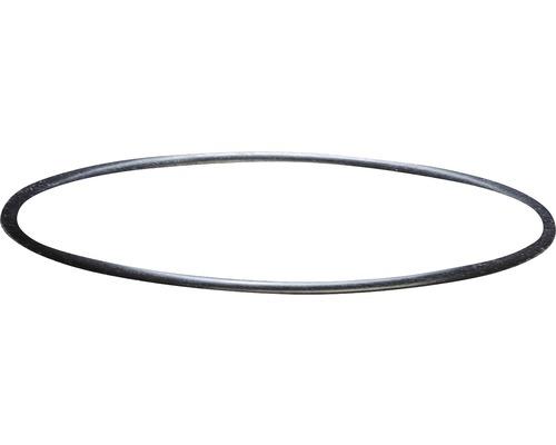 Filterkopf-Dichtung sera für 130, 130 + UV