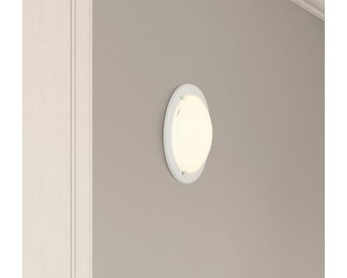 LED Deckenleuchte 12W 950 lm 3000 K warmweiß Ø 280 mm Miramar weiß