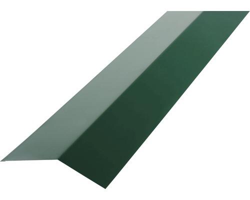 PRECIT Rinneneinhang für Trapezblech H12 moss green RAL 6005 2000 x 83 x 65 mm