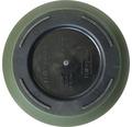 Lafiora Pflanztopf Fern KST Ø 34,9 cm, grün