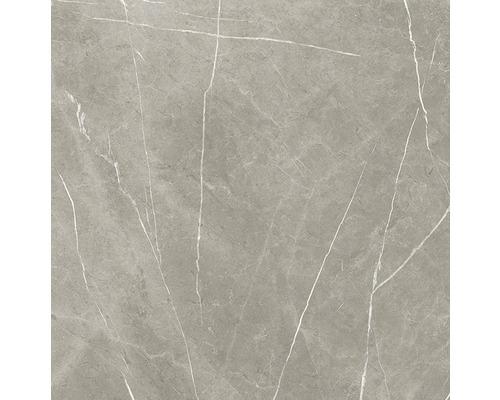 Wand- und Bodenfliese Always Taupe Natural 120x120 cm
