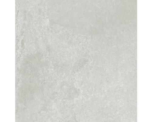 Wand- und Bodenfliese Fresh Ash Natural 60x60 cm