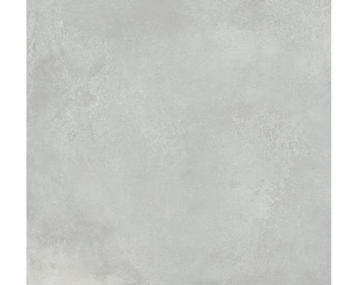 Wand- und Bodenfliese Fresh Ash Pulido 120x120 cm
