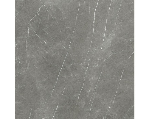 Wand- und Bodenfliese Always Dark Natural 120x120 cm