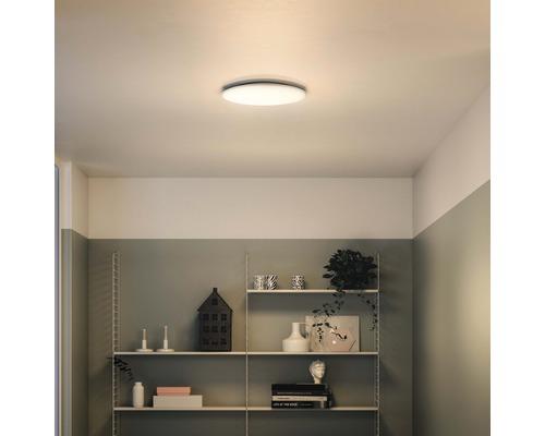 LED Deckenleuchte 1x17W 1600 lm 2700-6500 K warmweiß-tageslichtweiß Ø 350 mm Wawel weiß