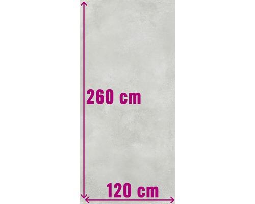 XXL Wand- und Bodenfliese Fresh Ash Natural 120x260 cm