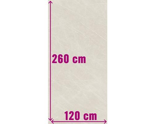 XXL Wand- und Bodenfliese Always Cream Pulido 120x260 cm