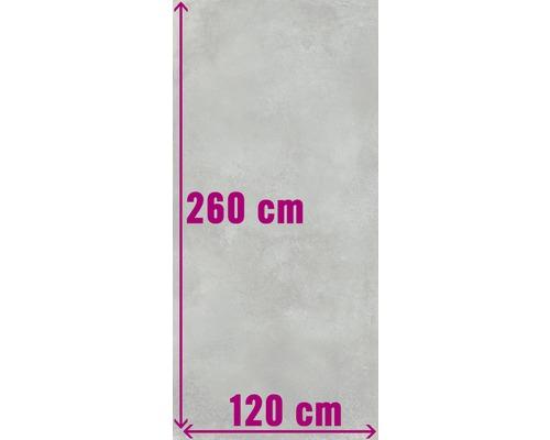 XXL Wand- und Bodenfliese Fresh Ash Pulido 120x260 cm