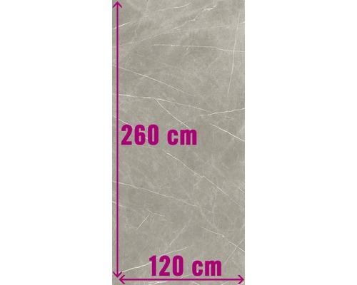 XXL Wand- und Bodenfliese Always Taupe Natural 120x260 cm