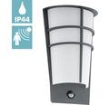 LED Sensor Außenwandleuchte 2x2,5W 360 lm 3000 K warmweiß H 300 mm Breganzo anthrazit/weiß