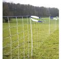 Wolfsabwehrnetz WolfNet Vario Einzelspitze 50 m x 108 cm