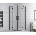 Eckeinstieg basano Ballino black 90 x 90 cm Klarglas Profilfarbe matt schwarz