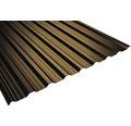 PRECIT Trapezplatte T18DR chocolate brown RAL 8017 3200 x 1138 x 0,5 mm