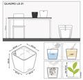Pflanzkübel Lechuza Quadro 21 x 21 x H 20 cm schwarz inkl. Erdbewässerungsystem Pflanzeinsatz Substrat Wasserstandsanzeiger